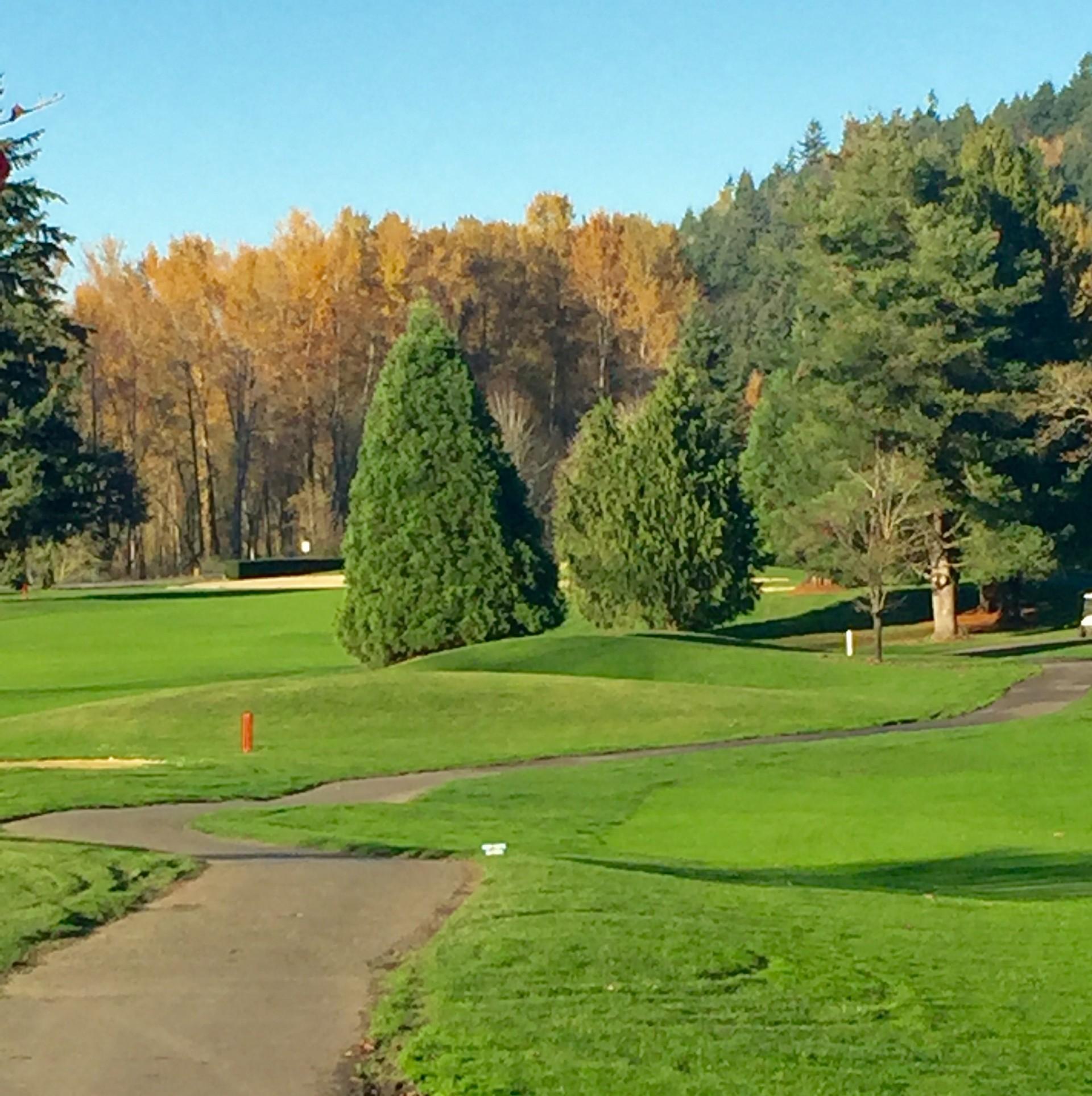 Auburn Golf Course 1