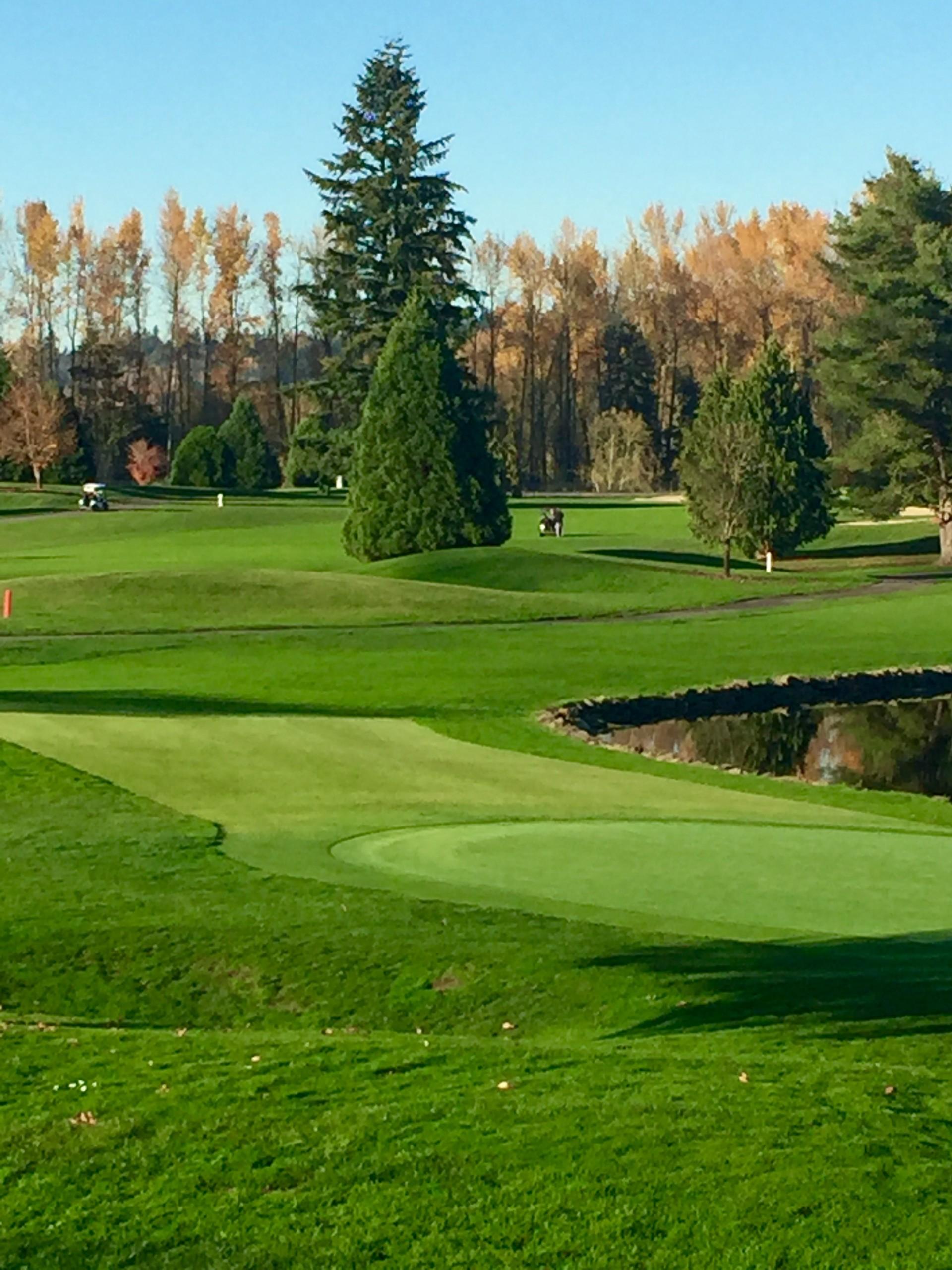 Auburn Golf Course 2