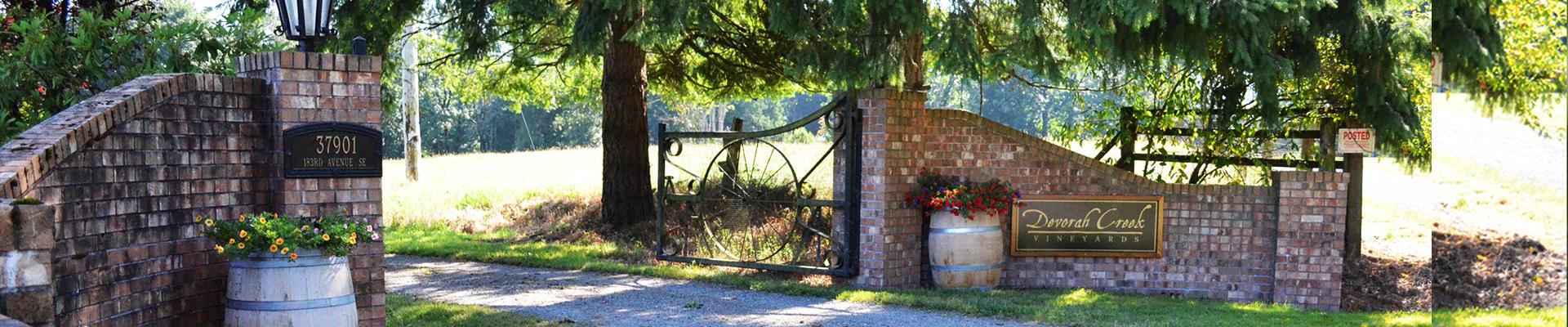 Devorah Creek Vineyard
