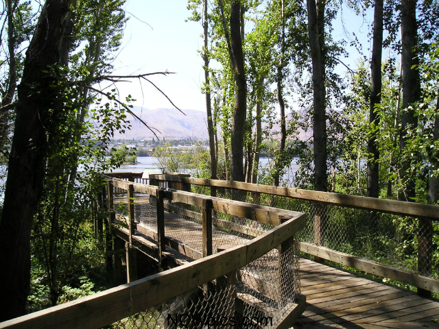 what to do in Wenatchee | Apple Capital Loop Trail
