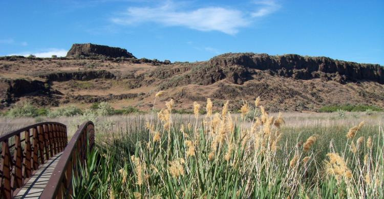 best family road trips | Columbia Wildlife Refuge