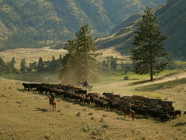 Washington State's small mountain towns