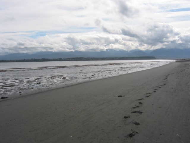most beautiful places in Washington State | Dungeness Spit