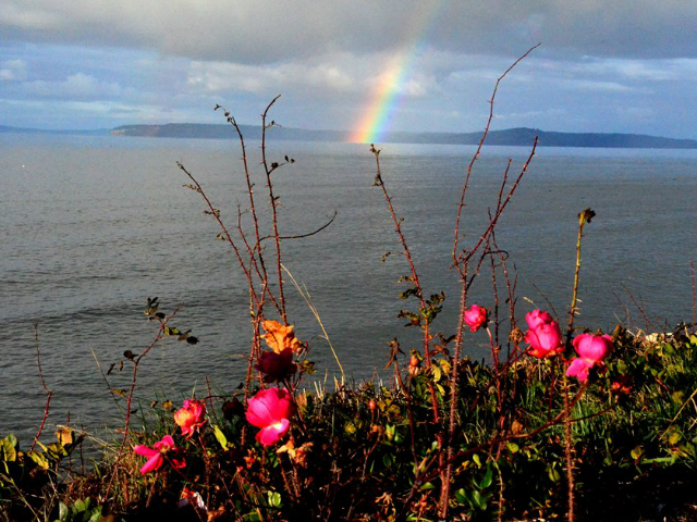 must stop towns in Washington State | Edmonds