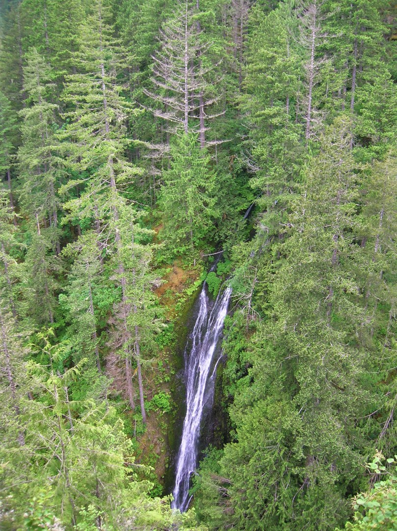 ScenicWA | Best Things to Do in Washington State | Fallsview Falls