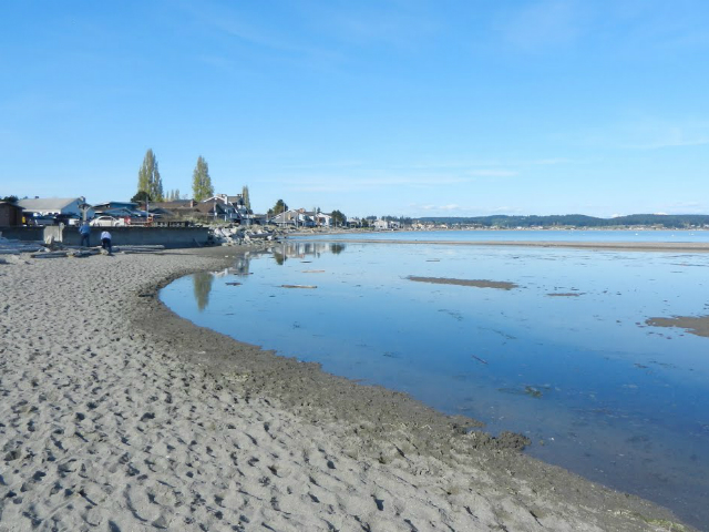 prettiest places in Whidbey Island | Freeland