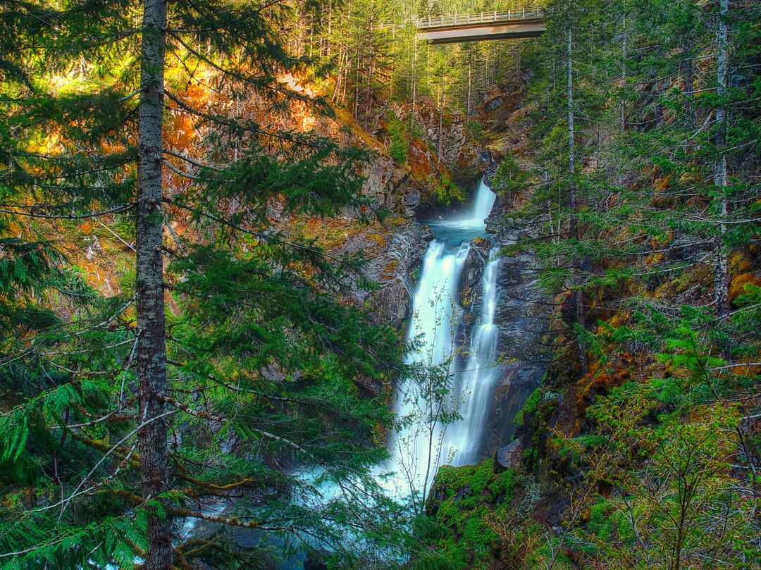 ScenicWA | Best Things to Do in Washington State | Hamma Hamma Falls