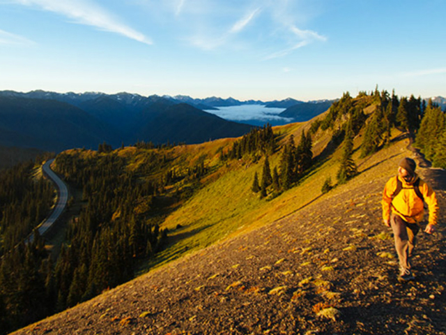 best places in the Olympic National Park