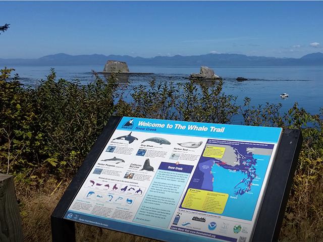 Hwy 112 Whale Trail 1
