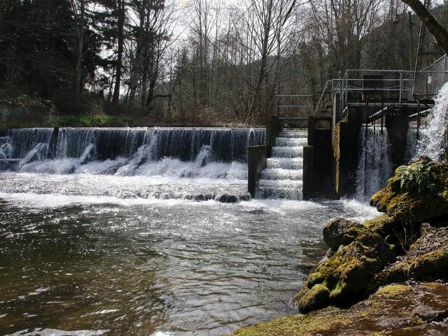 best fish hatcheries in Washington State