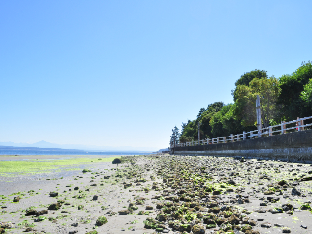 best beach towns in Washington State   Langley