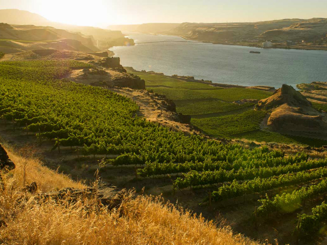 Scenic WA | Best Things to Do in Washington State | Maryhill Winery