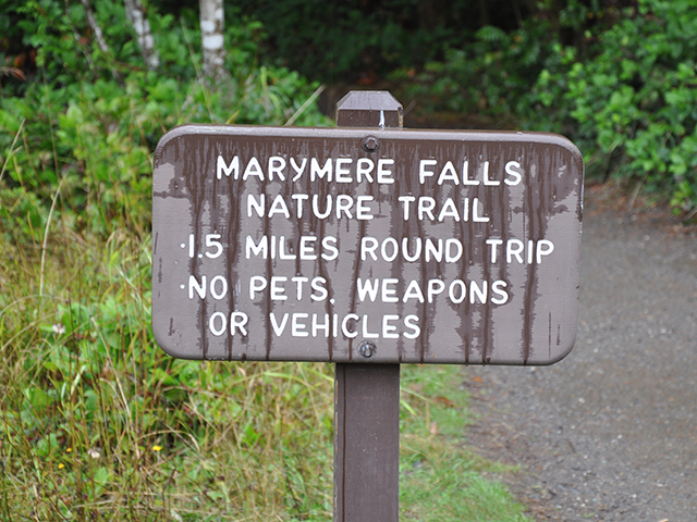 Scenic WA | Best Things to Do in Washington State | Marymere Falls