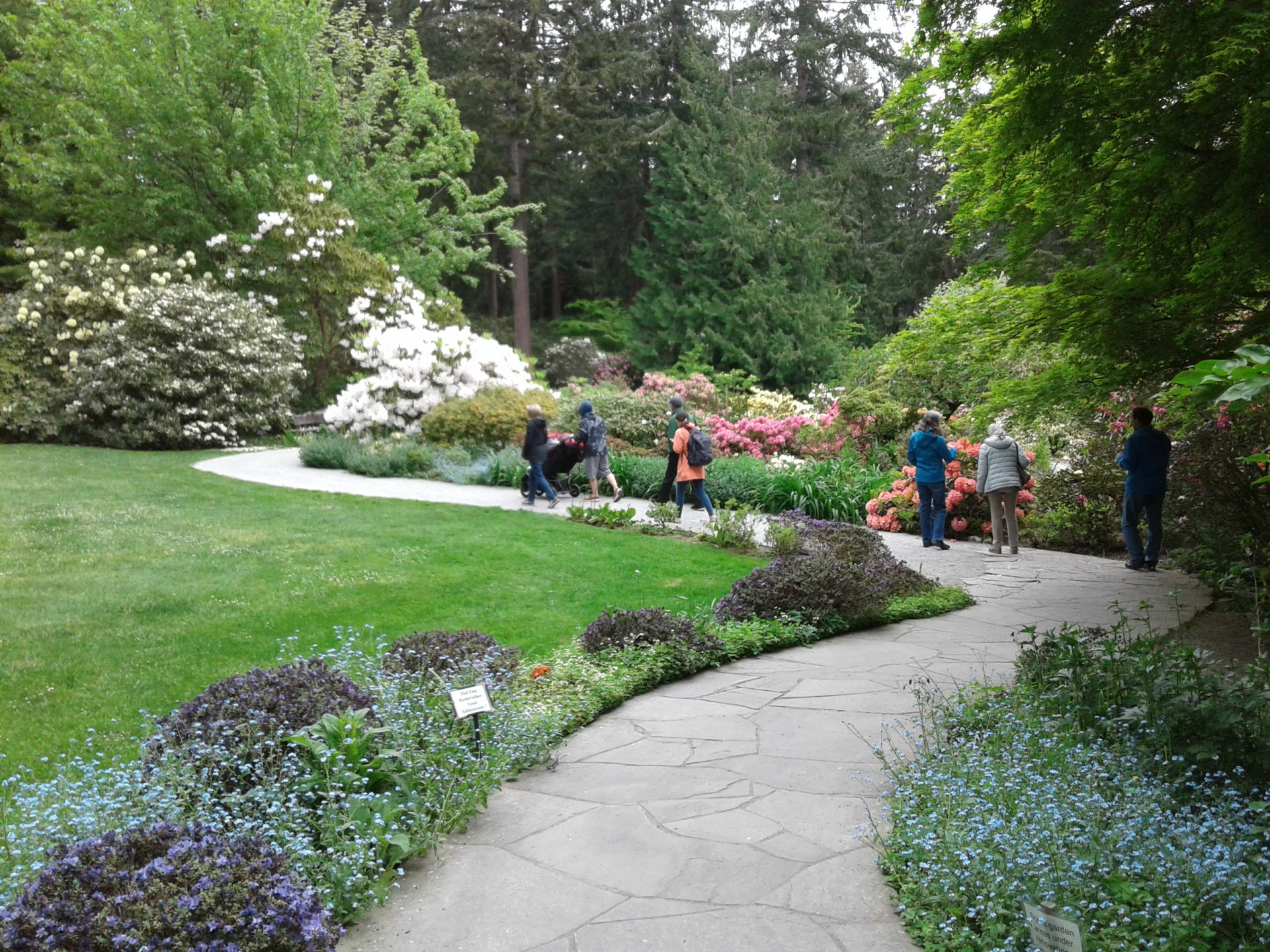 Scenic WA| Best Places to Visit in Washington State | Meerkerk Gardens