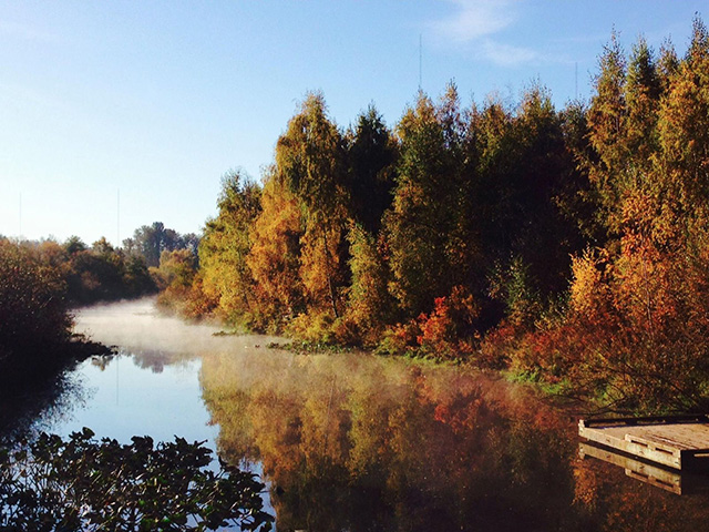 Scenic WA | Best Things to Do In Washington State | Mercer Slough