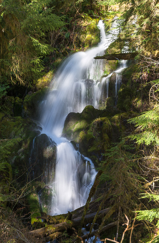 ScenicWA | Best Things to Do in Washington State | Mineral Creek Falls
