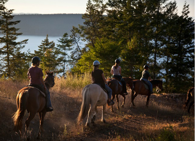 ScenicWA | Best Things to Do in Washington State | Orcas Island Trail Rides