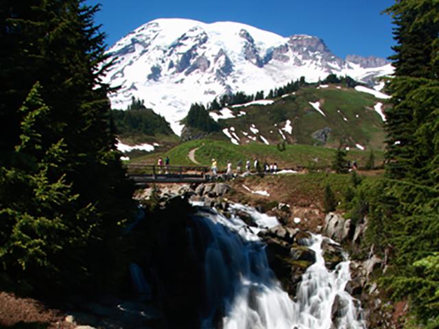 Paradise, Mt. Rainier 2
