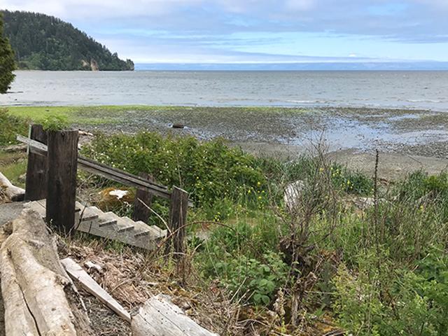 Pillar Point Beach Access