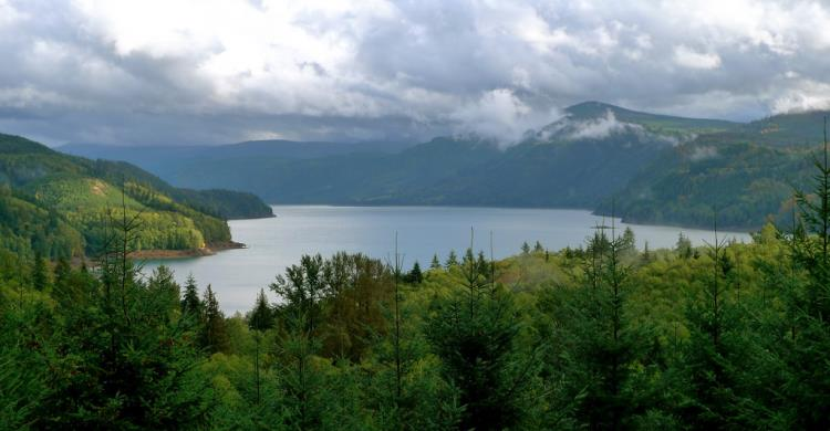 Best Places to Visit in Washington State | Riffe Lake