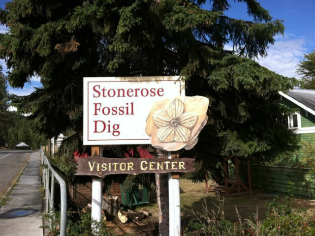 Best Places to Visit in Washington State | Stonerose Interpretive Center