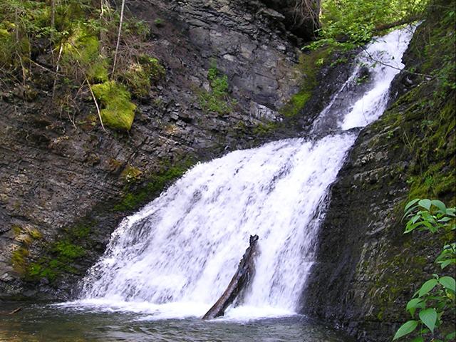 Sweet Creek Falls 1