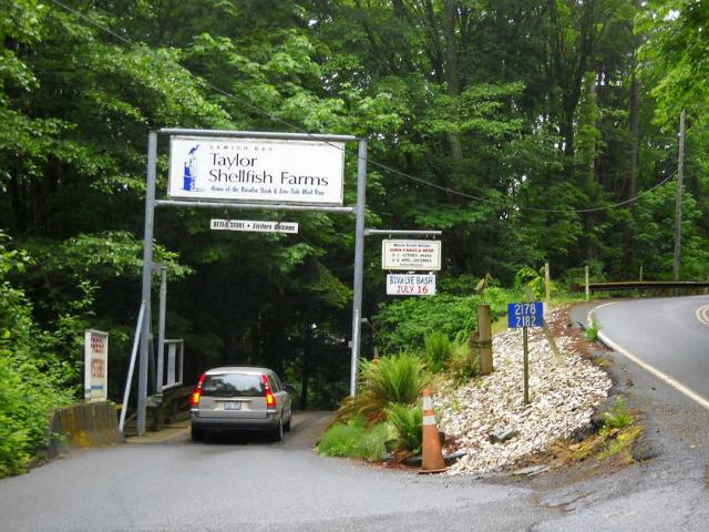 Taylor Shellfish Farms 1