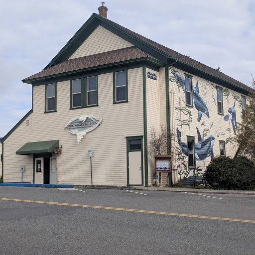 The Whale Museum 3