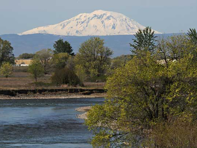 Mount Adams and the Yakima River