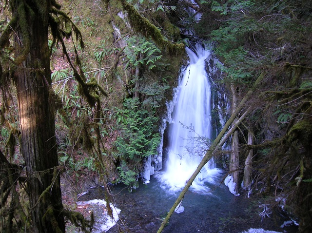 ScenicWA | Best Things to Do in Washington State | Wolf Creek Falls