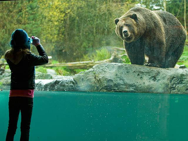 Woodland Park Zoo 1