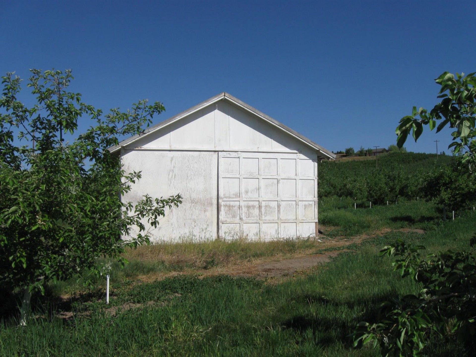 Kingdom Ranch of Cowiche 9