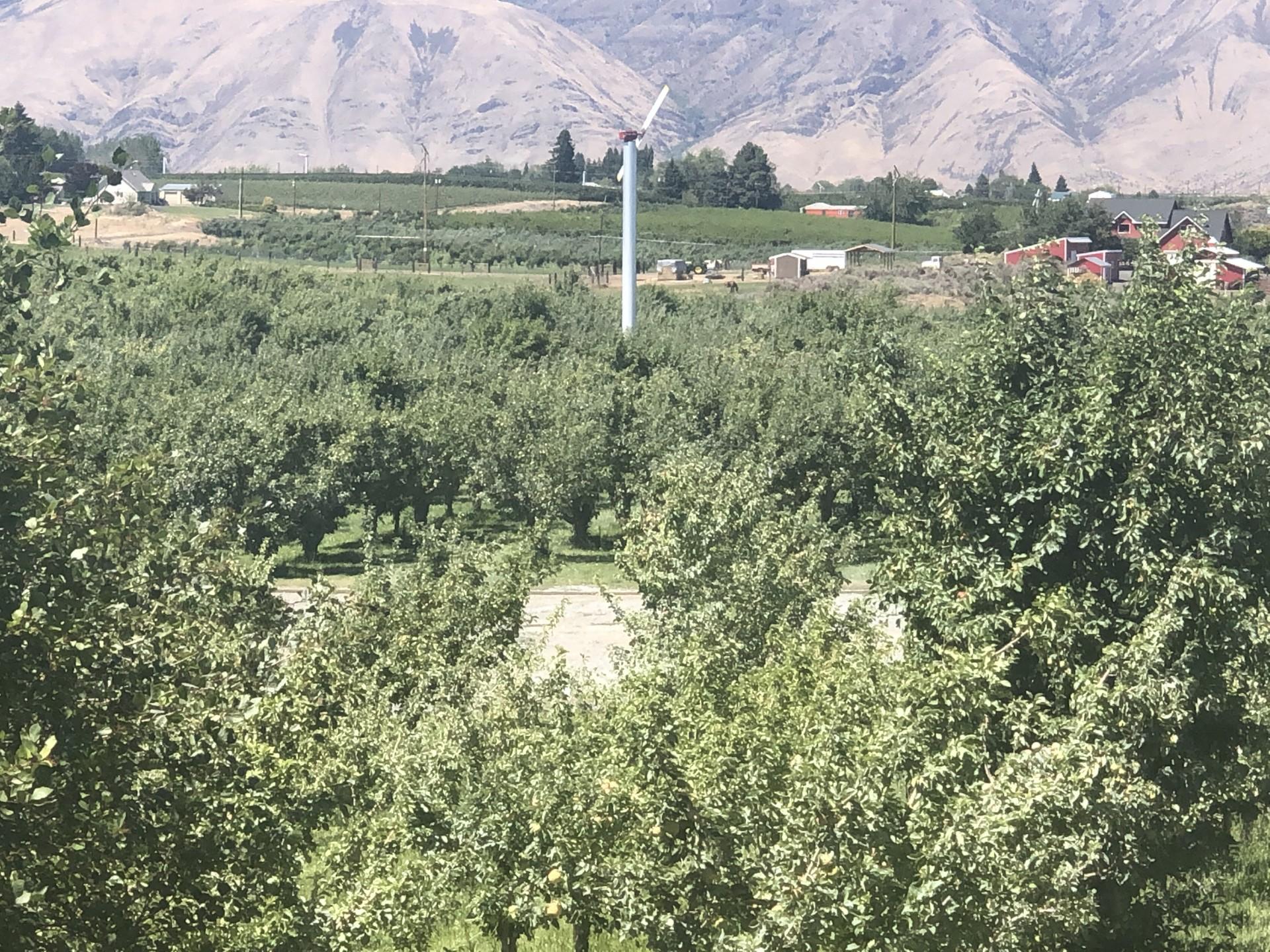 Rural Bldg Site with Irrigation 2