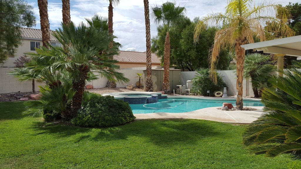 Palm Trees & Private Oasis with the Comforts of Home