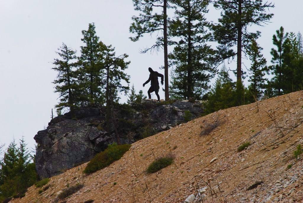 Sasquatch Disautel Pass