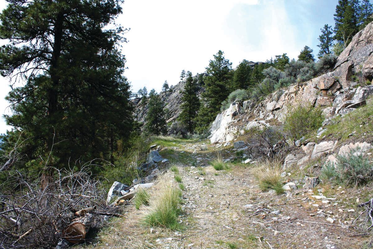 Whistler Canyon Trailhead 1