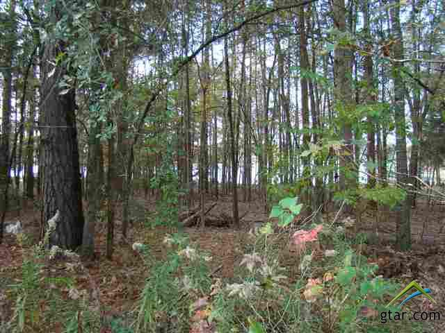 HJ NICE WOODED WATERFRONT LOT WITH SANDY BEACH ON BEAUTIFUL LAKE BOB SANDLIN.