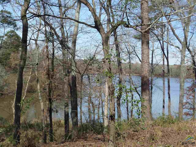 HK Beautiful tree filled lot with amazing views of Lake Cypress Springs. Great Bldg Site.