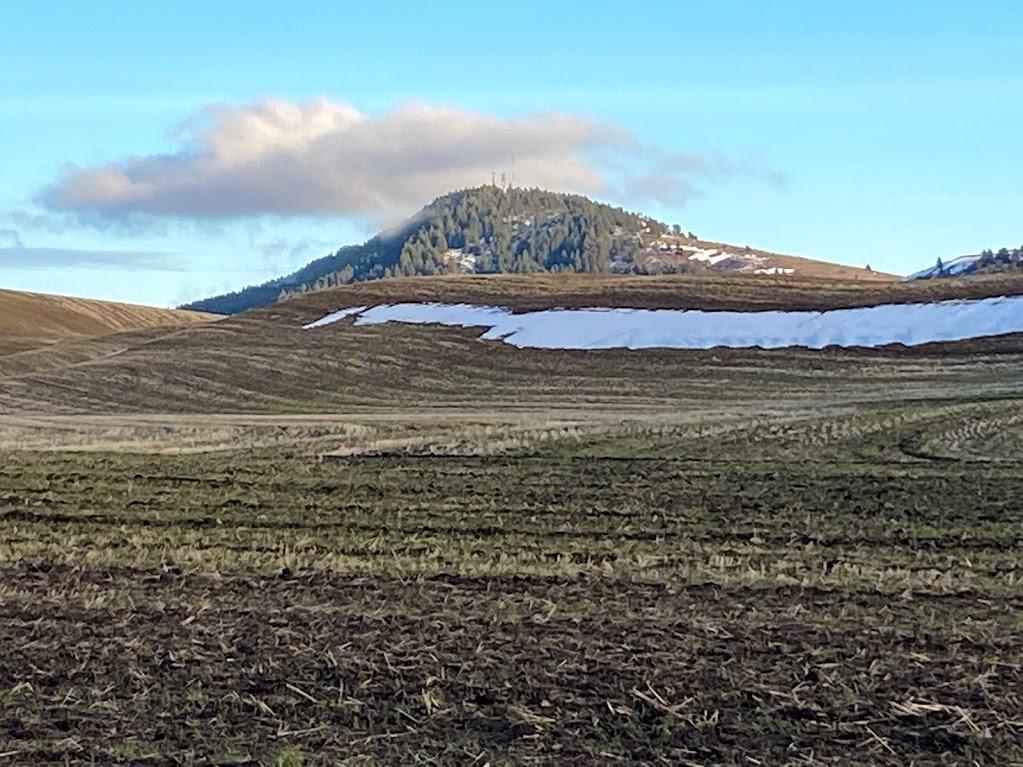 4. 2020 Koenig Land Company - 610+/- acres at Steptoe Butte 1